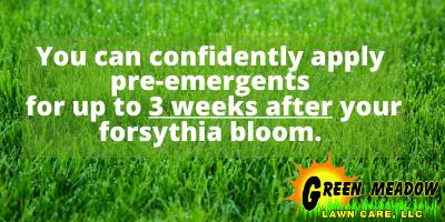 crabgrass pre emergents
