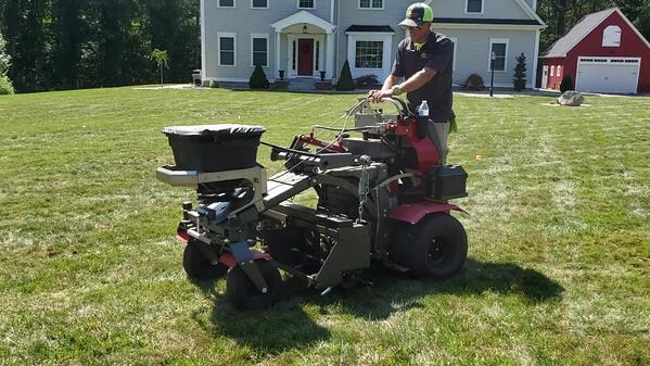 How to Seed your lawn