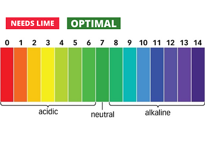 Ph Scale for lawn