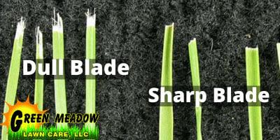 Dull vs Sharp Lawn Mower Blades