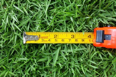 How to measure the size of your lawn